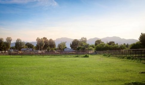 Irrigated Horse Property for Sale in Phoenix Arizona